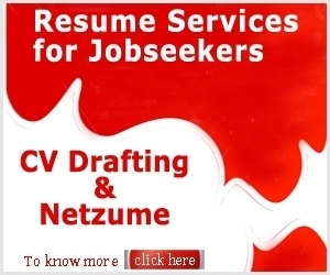 Netzume - Resume Website